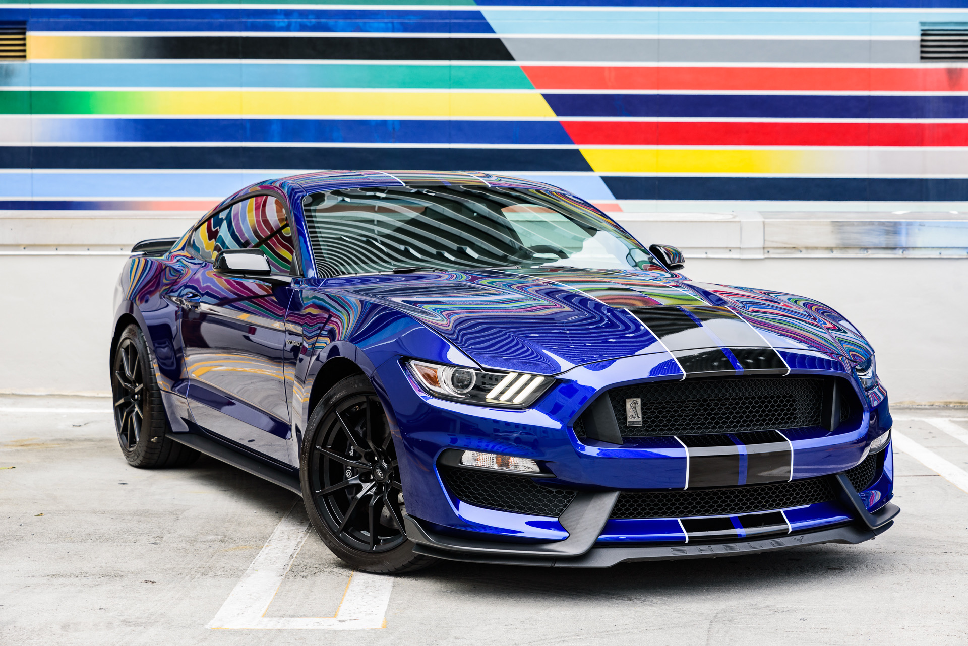 Name:  2016 GT350.JPG