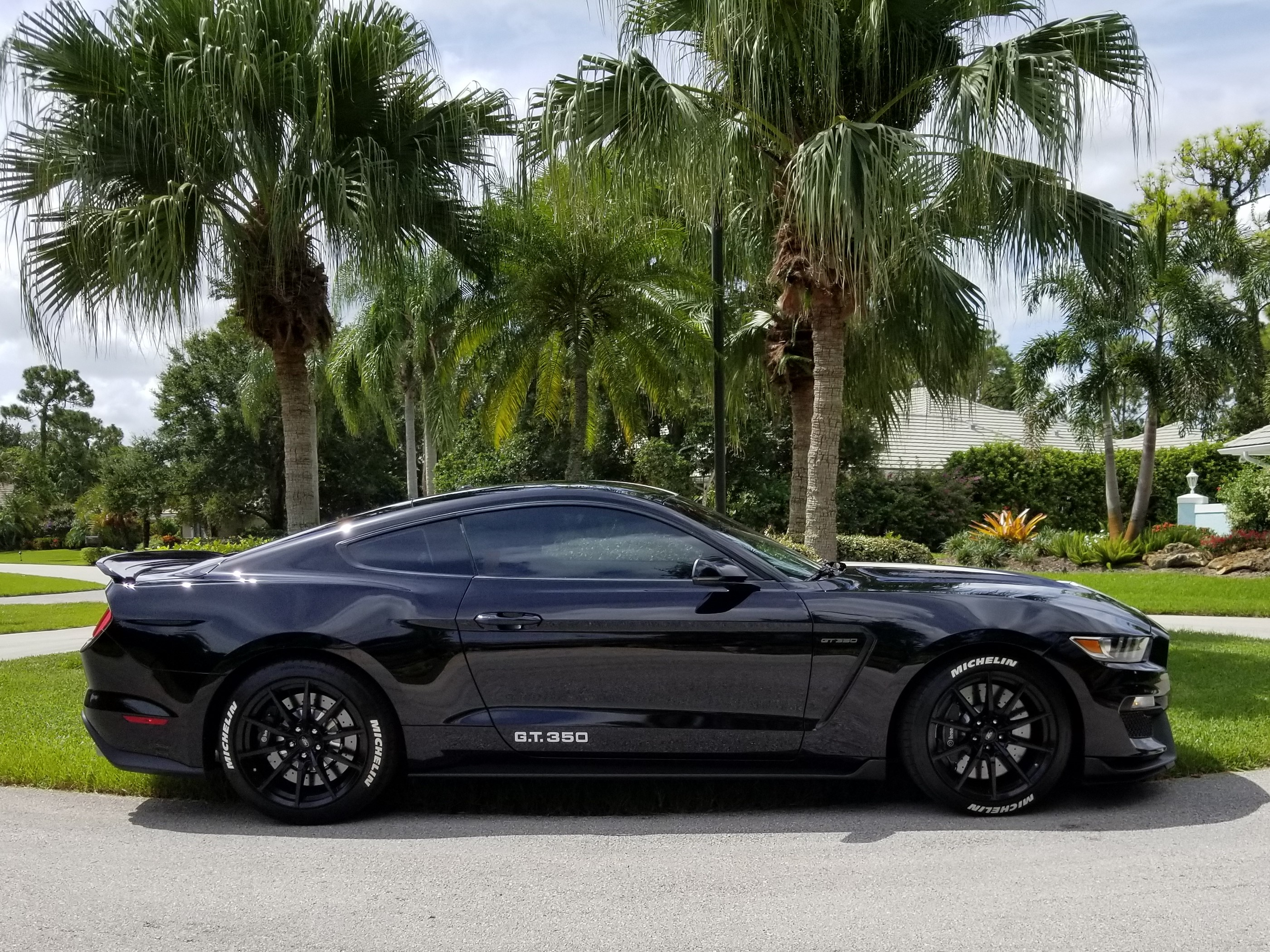 Shelby Gt350 Shadow Black Photos Page 2