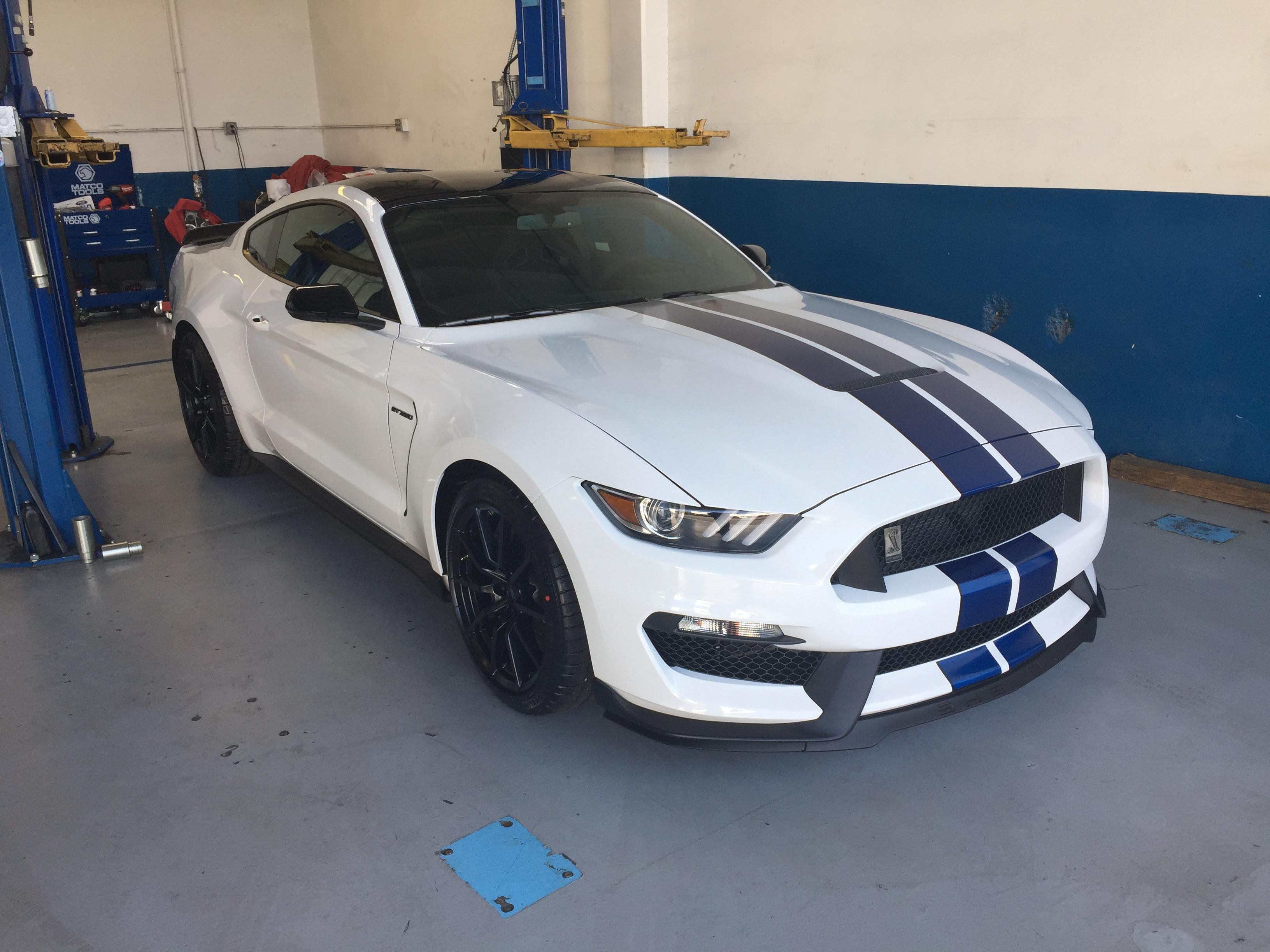2017 Mustang Gt350 Black >> 2017 White Blue Stripes Black Roof