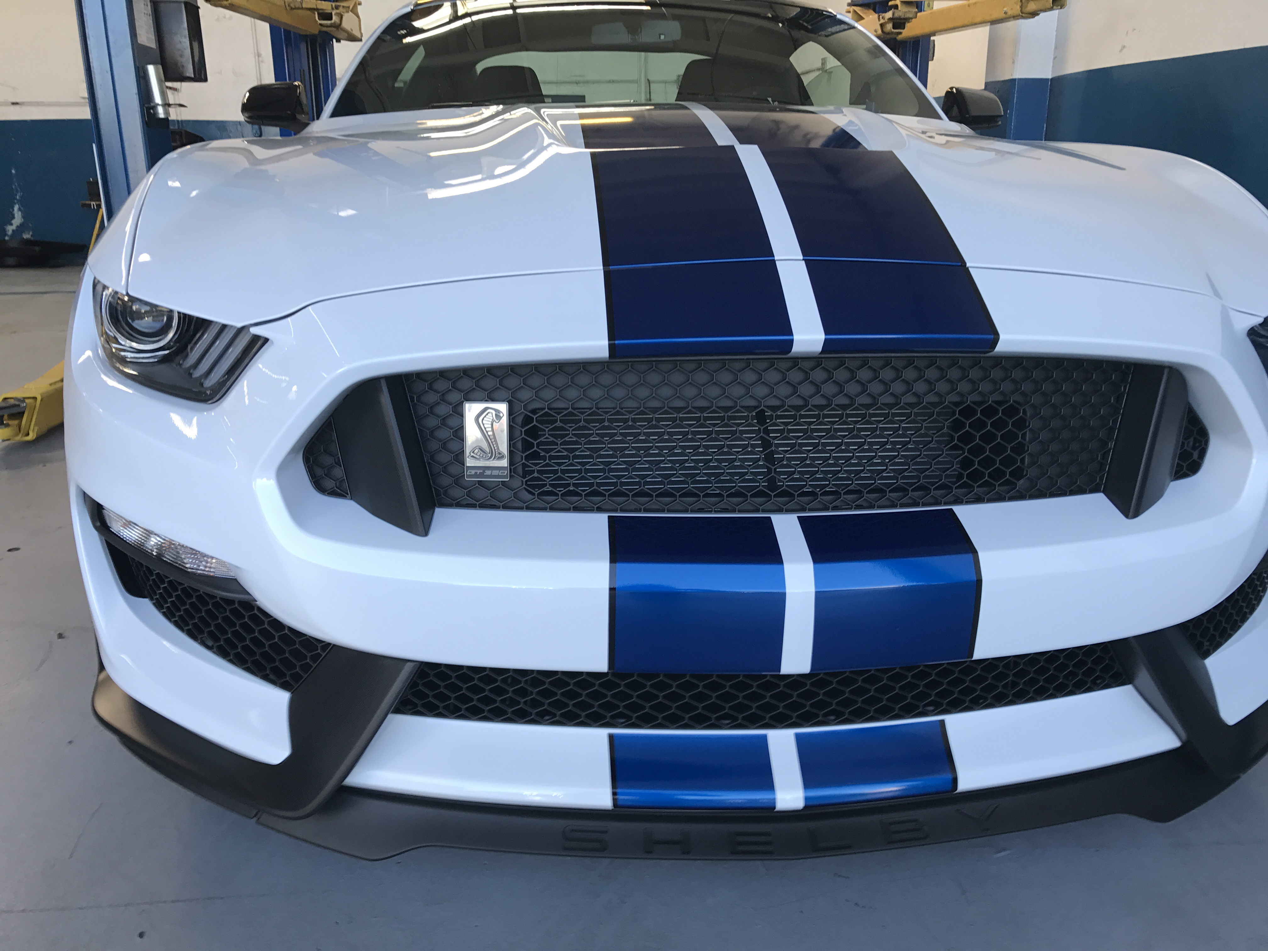 2018 Shelby Gt350 >> 2017 White Blue Stripes Black Roof
