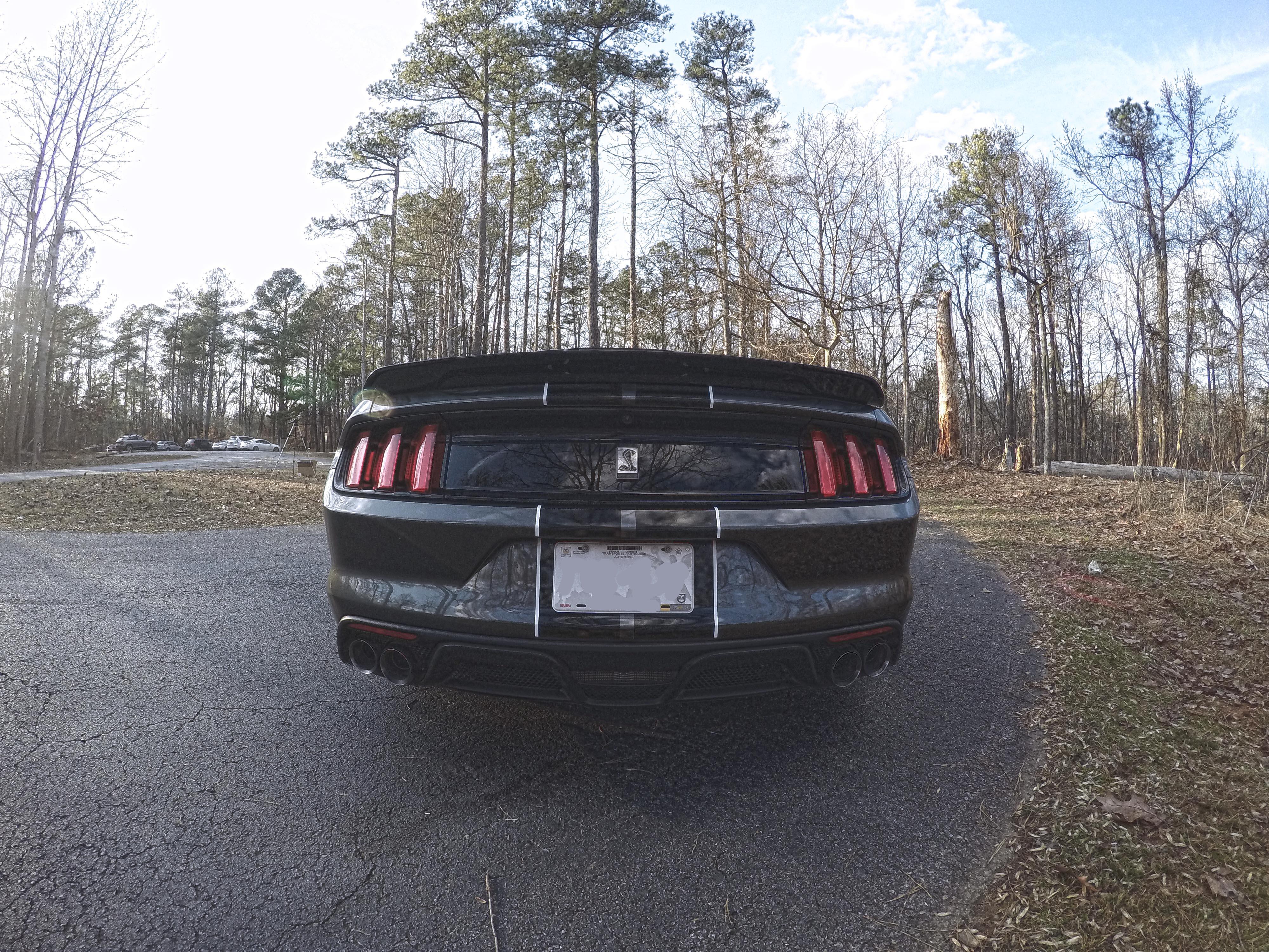 Name:  rear_low.jpg Views: 758 Size:  2.58 MB