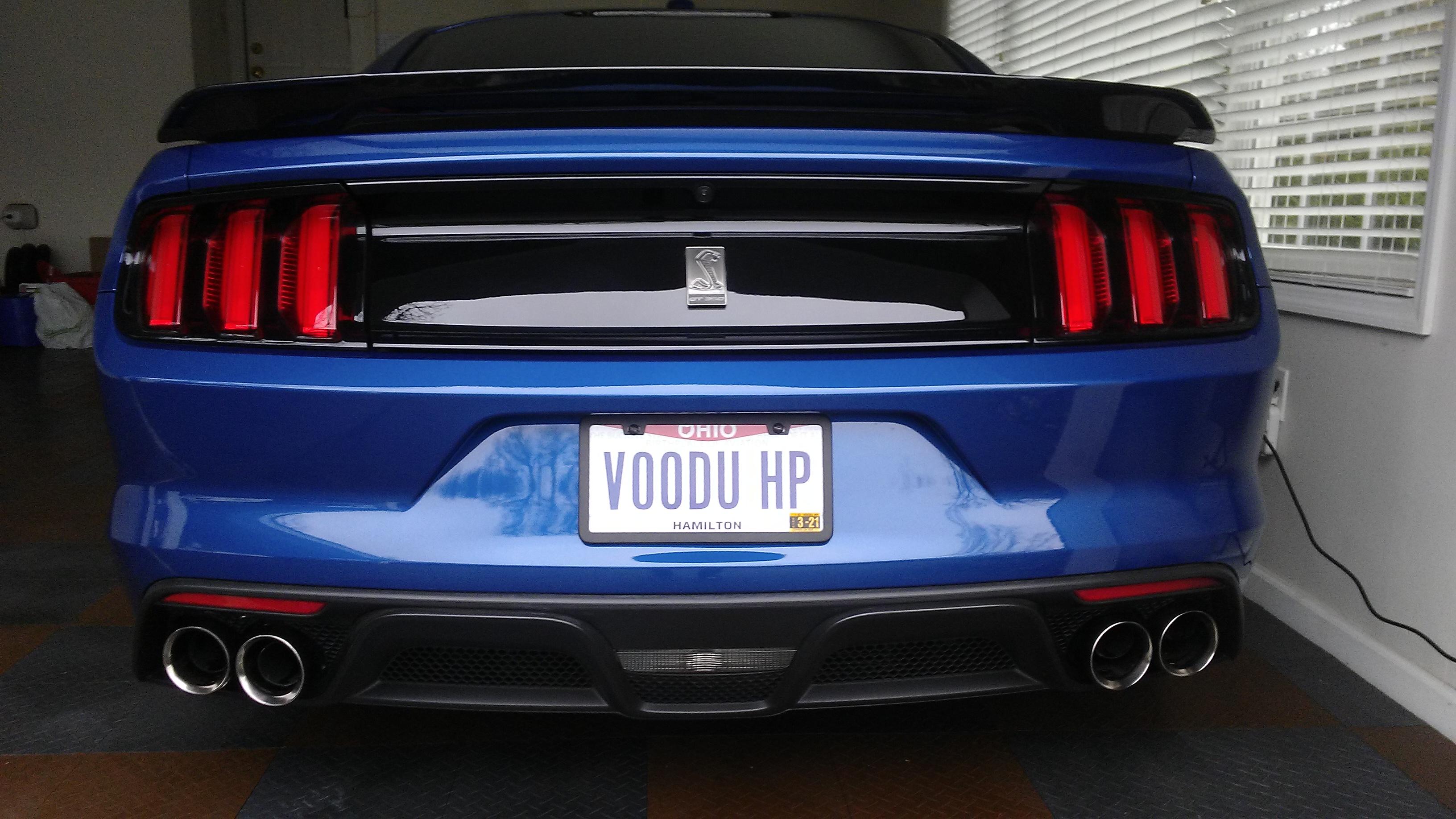 Name:  VOODU HP Plate .jpg Views: 10 Size:  1.78 MB